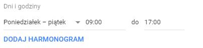 Wybrane dni i godziny Google Ads